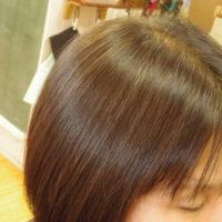 美しきハナヘナ毛
